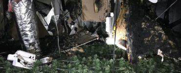 A marijuana grow operation in a Hesperia home had advanced lighting and filtration equipment. (San Bernardino County Sheriff's Department)